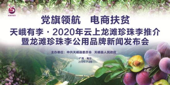 龙滩珍珠李公用品牌发布会在南宁成功举办